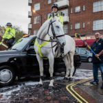 Charity Cab Wash Roshan with a Police horse